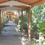 Ometepe Hotels